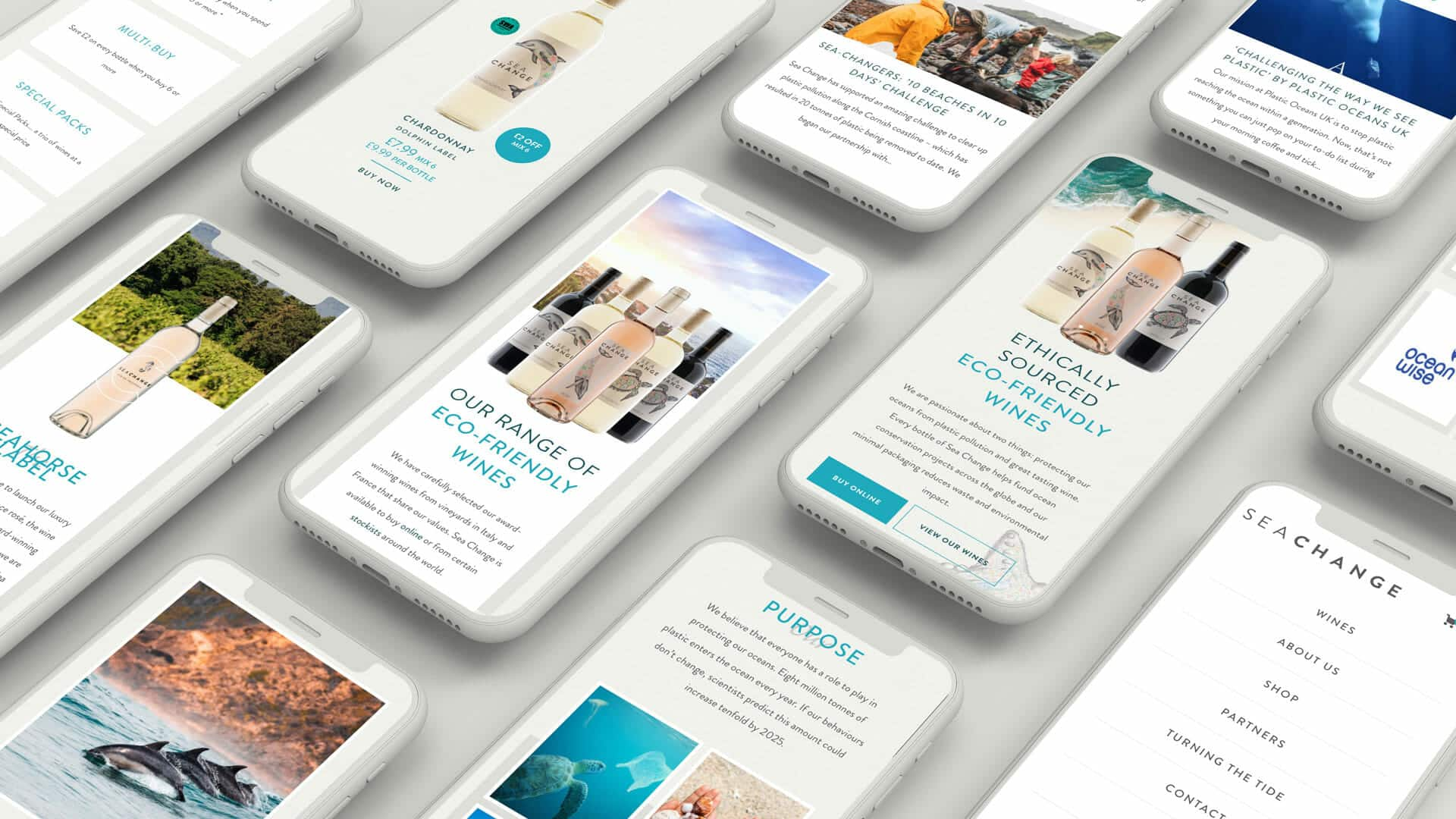 mobile responsive website redesign for FMCG